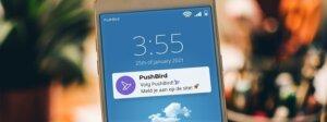 pushbird